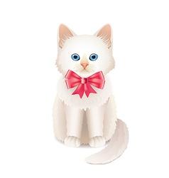 kitten pink bow vector image
