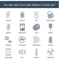 16 wheat icons vector