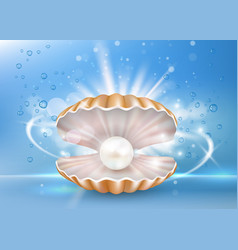 beautiful marine pearl shell poster banner vector image