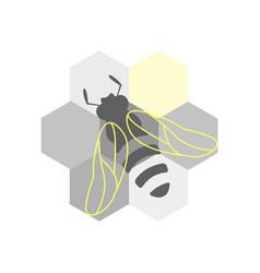 honeycomb honey bee vector image