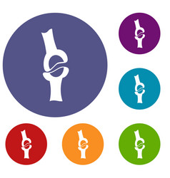 knee joint icons set vector image