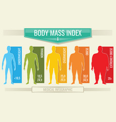 Man body mass index fitness bmi chart with vector