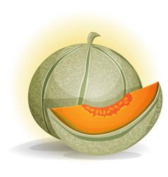 Melon vector