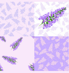 purple flowers seamless pattern vector image