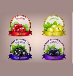 berry labels realistic eco collection vector image