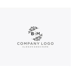 Initial bm letters floral frames monogram wedding vector