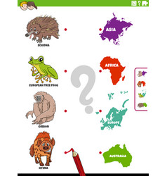 Match animal species and continents educational vector