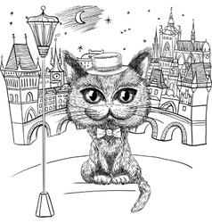 Cat in Prague Prague Castle and Charles Bridge vector image vector image