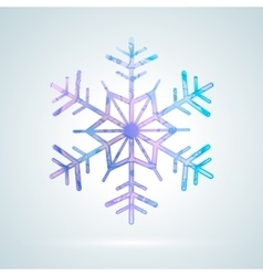 Bright colourful ice snowflake vector image