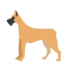 Great dane dog vector image