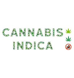 Cannabis indica caption mosaic of cannabis vector