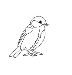 coloring book tit vector image