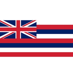 Hawaii flag vector