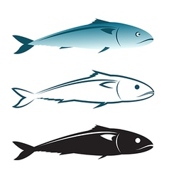 image of an mackerel design vector image