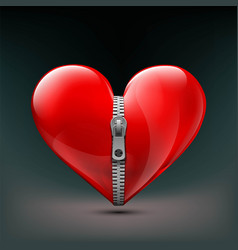 realistic icon human red heart with zipper vector image