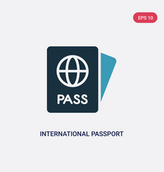 two color international passport icon from vector image