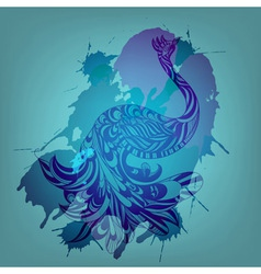blue peacock vector image vector image