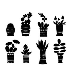 flowers in pots silhouette vector image vector image