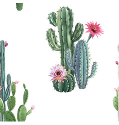 Beautiful watercolor cactus seamless vector