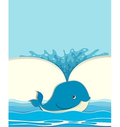 Blue whale splashing water vector image