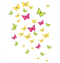 butterfly swarm vector image