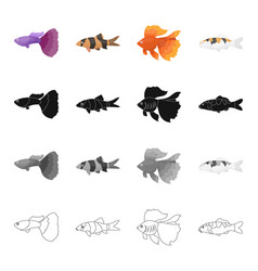 Different types of aquarium and marine fish vector
