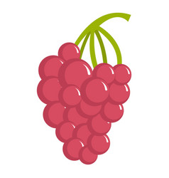 grape icon cartoon style vector image