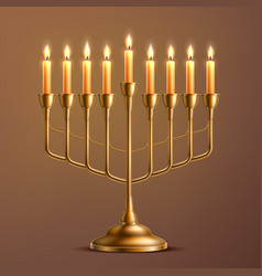 Hanukkah jewish holiday menorah vector