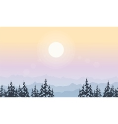 Landscape of spruce forest at morning vector