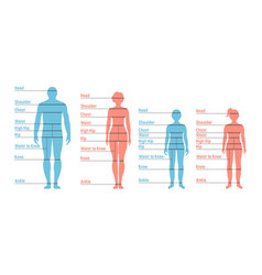 Man woman boy and girl size chart human front vector