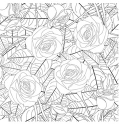 Rose and leaves outline on white background vector
