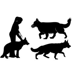 set dog silhouettes german shepherd dogs vector image