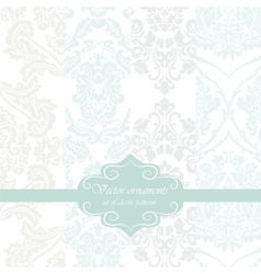 Vintage Floral ornament damask patterns vector
