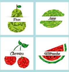 delicious fruit vector image