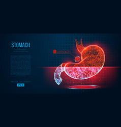 abstract silhouette polygonal organ stomach vector image
