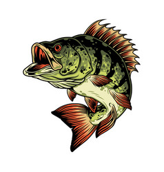 bass fish colorful concept vector image