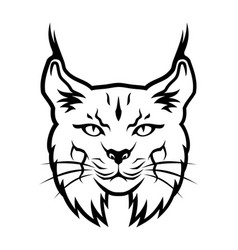 bobcat outline silhouette vector image