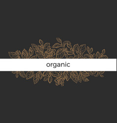 design branch organic vector image