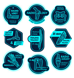 orthopedics health center x-ray icons vector image