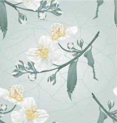 Seamless texture twig jasmine flower vector image