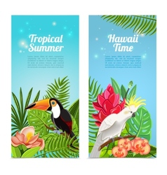Tropical island birds vertical banners set vector image