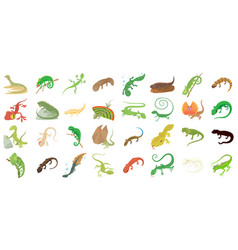 lizard icon set cartoon style vector image