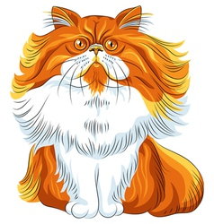cute red fluffy Persian cat vector image