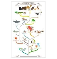 Biological evolution animals scheme vector