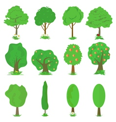 collection of green trees isolates vector image vector image