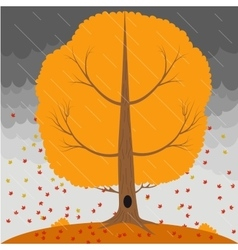 Autumn tree in the rain and falling leaves on the vector image
