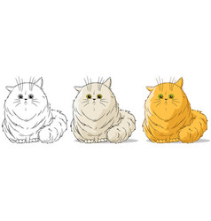 cartoon cute sitting big cat set vector image