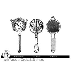 cocktail strainers types vector image