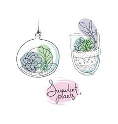 Glass terrariums with succulents set vector