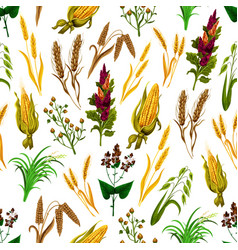 Grains and cereals seamless pattern vector